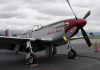 Aviat – Pitts S-2B (P-51 Mustang Fighter)