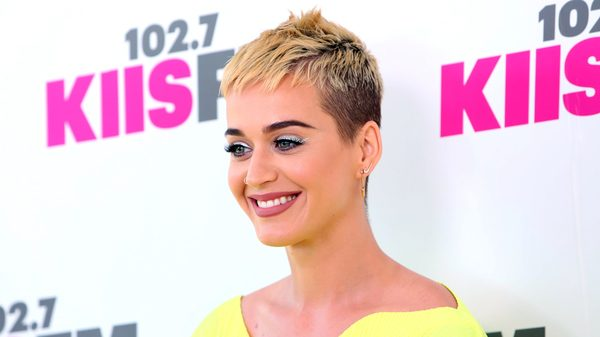 Katy Perry wants acting job
