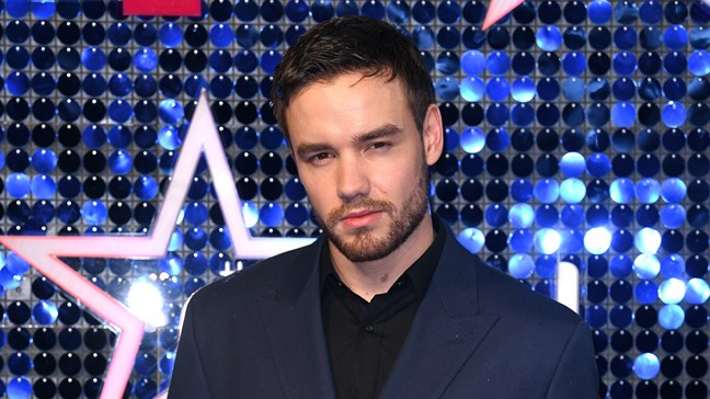 Er liam payne dating sophia smith 2013